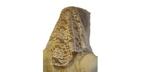 White Scalloped Lace Untrimmed Mantilla Veil