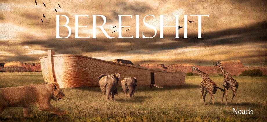 Bereishit Banner - Noach