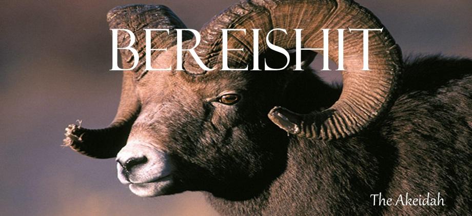 Bereishit Banner - Birth of Akeidah