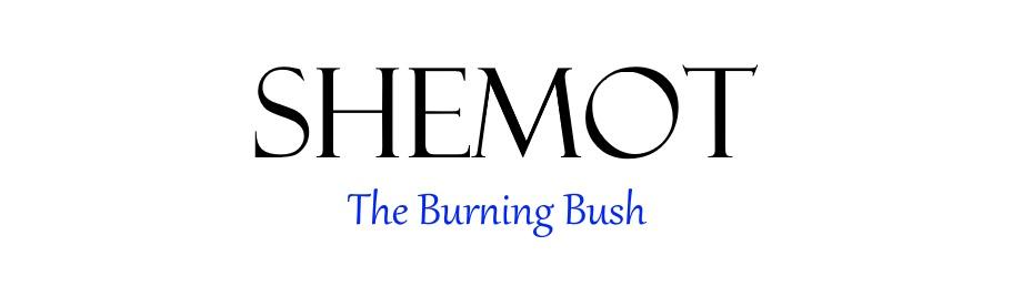 Shemot Chapter 3