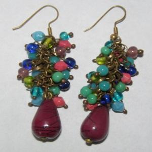 Multi Colored Earrings